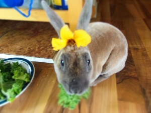 beatrice mange des fleurs