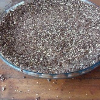 6.étaler le mélange dans le fond d'une assiette à tarte et refrigérer