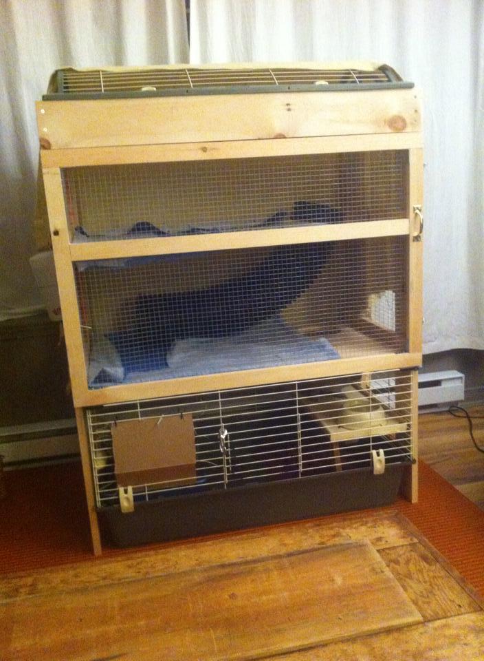 l amour d un lapin vivre vg. Black Bedroom Furniture Sets. Home Design Ideas