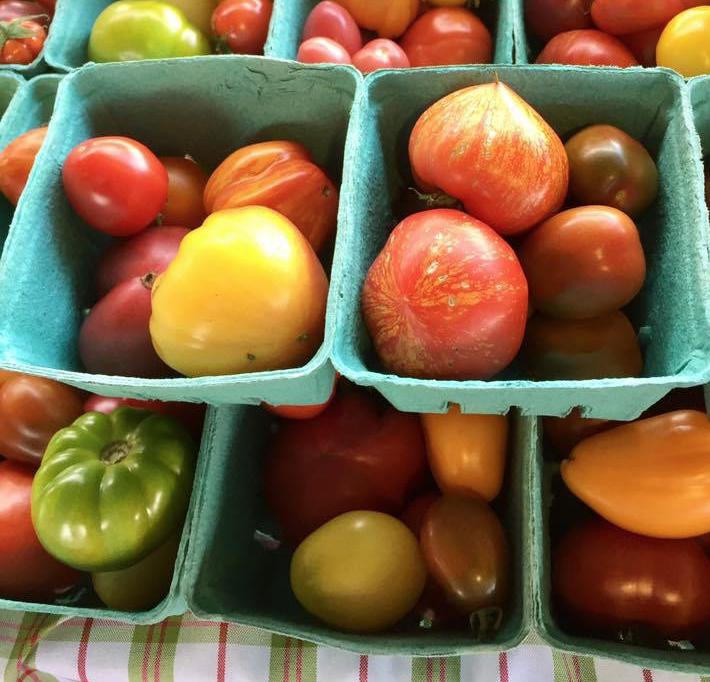 tomates ancestrales Plante Deseve