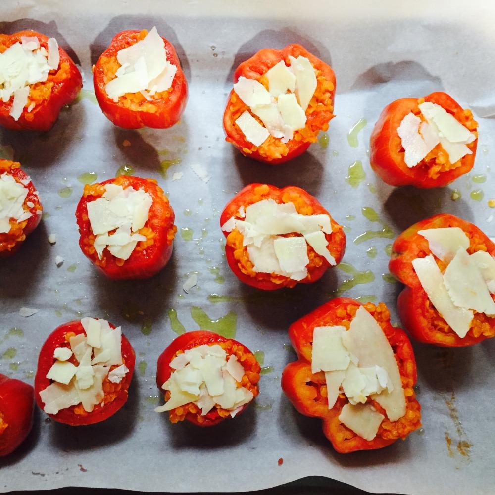 tomates farcies à cuire